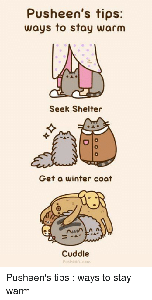 Memes, Winter, and 🤖: Pusheen's tips:  ways to stay warm  Seek Shelter  Get a winter coat  Cuddle  Pusheen.com Pusheen's tips : ways to stay warm