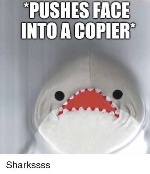 Face, Copier, and Pushes: PUSHES FACE  INTOA COPIER Sharkssss