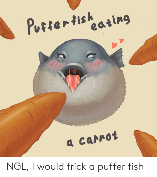 Frick, Fish, and Puffer Fish: Pustertish  eating  а саrrot NGL, I would frick a puffer fish