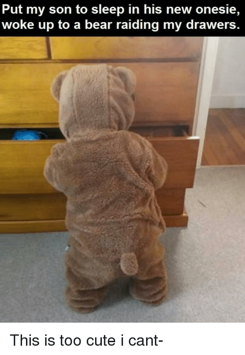 Cute, Bear, and Sleep: Put my son to sleep in his new onesie,  woke up to a bear raiding my drawers This is too cute i cant-