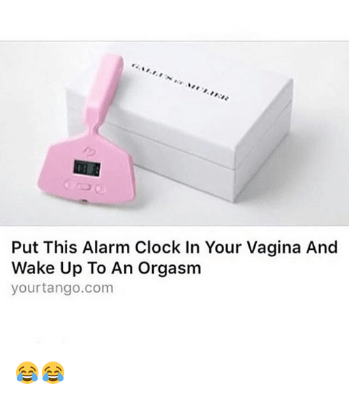 put-this-alarm-clock-in-your-vagina-and-