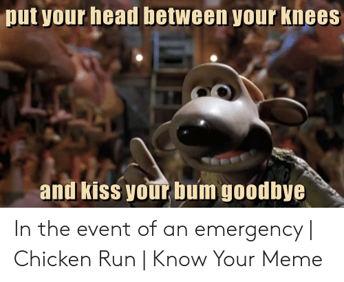 Head, Meme, and Run: put your head between your knees and kiss your bum goodbye In the event of an emergency | Chicken Run | Know Your Meme