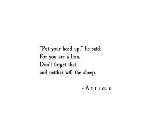 """Head, Lion, and Sheep: """"Put your head up,"""" he said.  For you are a lion.  Don't forget that  and neither will the sheep.  - Ati cu s"""
