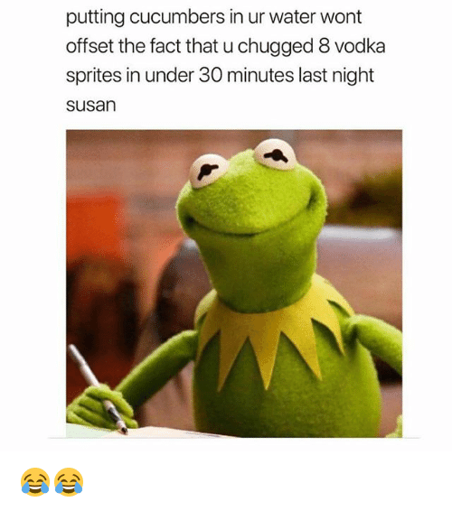 Memes, Water, and Vodka: putting cucumbers in ur water wont  offset the fact that u chugged 8 vodka  sprites in under 30 minutes last night  susan 😂😂