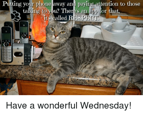 Memes, Phone, and Wednesday: Putting vour phone away and paying attention to those  ki  ng to vou? There's an app for that  ng to you? There's an app for that,  it's called B  ESPECT Have a wonderful Wednesday!