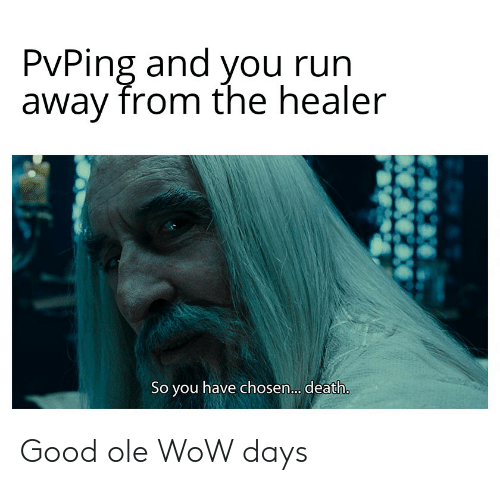 PvPing and You Run Away From the Healer So You Have Chosen
