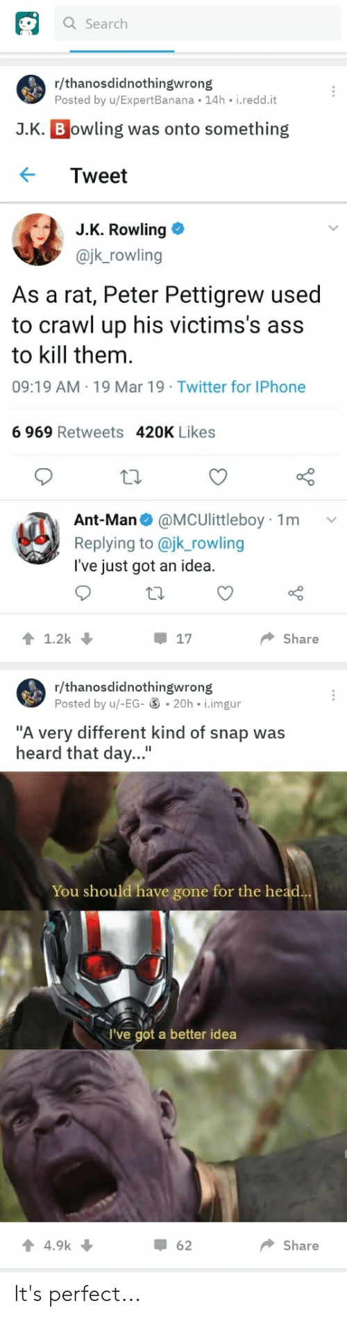 """Ass, Head, and Iphone: Q Search  r/thanosdidnothingwrong  Posted by u/ExpertBanana 14h i.redd.it  J.K. B owling was onto something  ← Tweet  J.K. Rowling  @jk_rowling  As a rat, Peter Pettigrew used  to crawl up his victims's ass  to kill them.  09:19 AM 19 Mar 19 Twitter for IPhone  6 969 Retweets  420K Likes  Ant-Man@MCUlittleboy 1m  Replying to @jk_rowling  I've just got an idea.  Share  r/thanosdidnothingwrong  Posted by u/-EG- 20h i.imgur  """"A very different kind of snap was  heard that day...""""  You should have gone for the head  I've got a better idea  62  Share It's perfect..."""