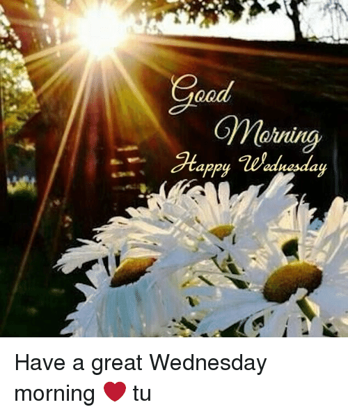 Qqd Gyvlouring Quin 2tappywednesday Nesaa Have A Great Wednesday