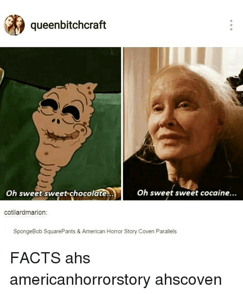 queenbitchcraft oh sweet sweet chocolate oh sweet sweet cocaine cotilardmarion spongebob 13022516 ✅ 25 best memes about american horror story coven american,American Horror Story Coven Memes