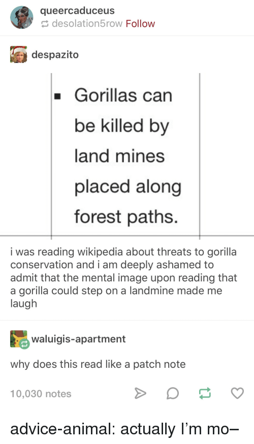 Advice, Tumblr, and Wikipedia: queercaduceus  desolation5row Follow  despazito  Gorillas can  be killed by  land mines  placed along  forest paths.  i was reading wikipedia about threats to gorilla  admit that the mental image upon reading that  conservation and i am deeply ashamed to  a gorilla could step on a landmine made me  laugh  aigis-apartment  why does this read like a patch note  10,030 notes advice-animal:  actually I'm mo–
