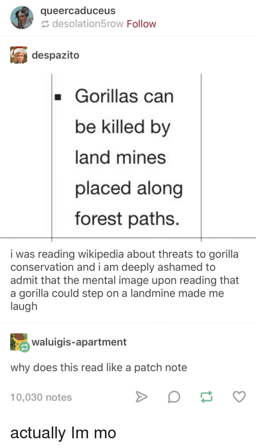 Wikipedia, Image, and Forest: queercaduceus  desolation5row Follow  despazito  Gorillas can  be killed by  land mines  placed along  forest paths.  i was reading wikipedia about threats to gorilla  admit that the mental image upon reading that  conservation and i am deeply ashamed to  a gorilla could step on a landmine made me  laugh  aigis-apartment  why does this read like a patch note  10,030 notes actually Im mo