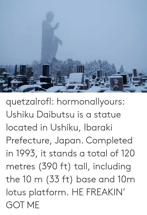 Tumblr, Blog, and Http: quetzalrofl: hormonallyours:  Ushiku Daibutsu is a statue located in Ushiku, Ibaraki Prefecture, Japan. Completed in 1993, it stands a total of 120 metres (390 ft) tall, including the 10 m (33 ft) base and 10m lotus platform.  HE FREAKIN' GOT ME