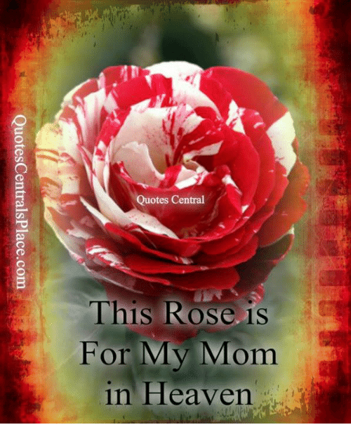 Quotes Central This Rose Is For My Mom In Heaven