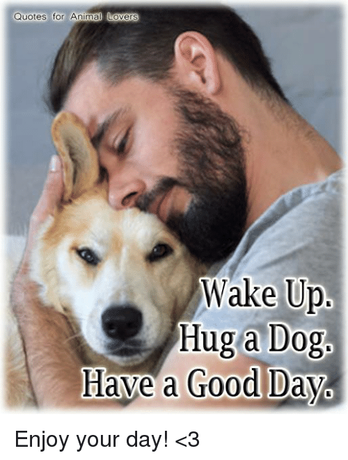 Quotes For Animal Lovers Wake Up Hug A Dog Have A Good Day Enjoy