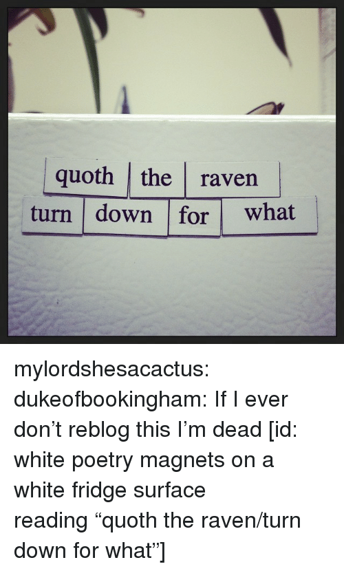 "Target, Tumblr, and Blog: quoth the raven  turn down for what mylordshesacactus: dukeofbookingham: If I ever don't reblog this I'm dead [id: white poetry magnets on a white fridge surface reading ""quoth the raven/turn down for what""]"