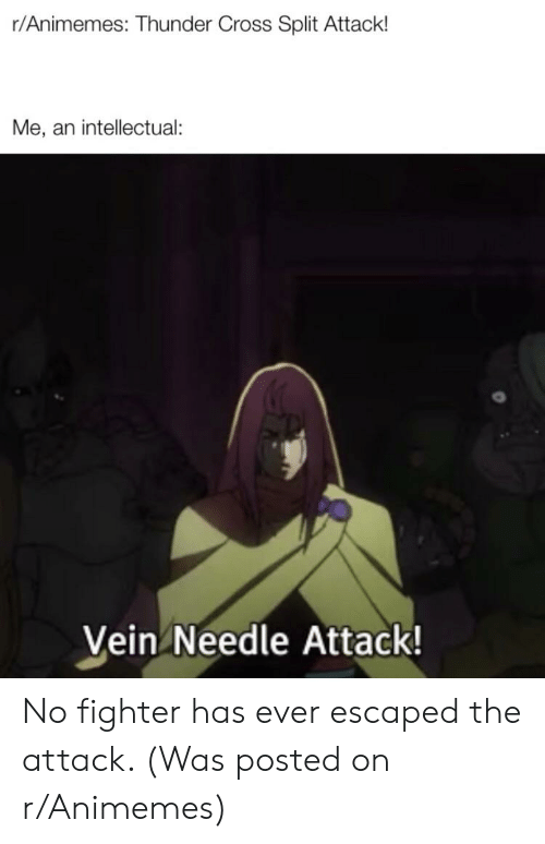 Cross, Thunder, and Split: r/Animemes: Thunder Cross Split Attack!  Me, an intellectual:  Vein Needle Attack! No fighter has ever escaped the attack. (Was posted on r/Animemes)