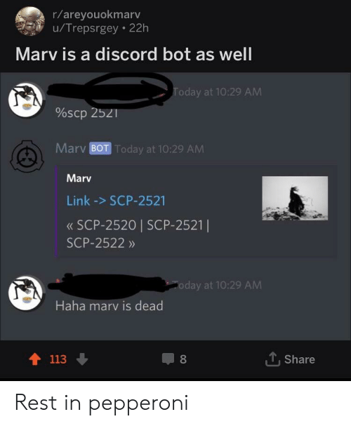 Rareyouokmarv uTrepsrgey 22h Marv Is a Discord Bot as Well
