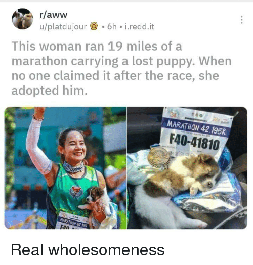 Aww, Lost, and Puppy: r/aww  u/platdujour.6h i.redd.it  This woman ran 19 miles of a  marathon carrying a lost puppy. When  no one claimed it after the race, she  adopted him.  MARATHON 42.195K  F40-41810  FAn Real wholesomeness