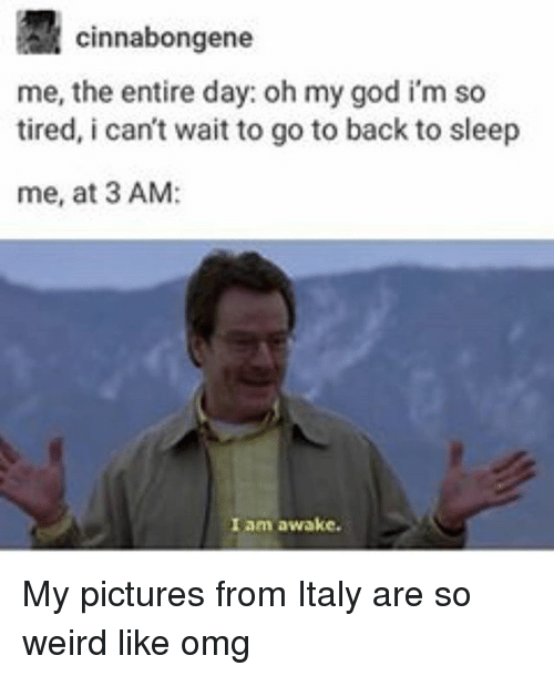 God, Memes, and Oh My God: R Cinnabongene  me, the entire day: oh my god im so  tired, i can't wait to go to back to sleep  me, at 3 AM:  I am awake. My pictures from Italy are so weird like omg