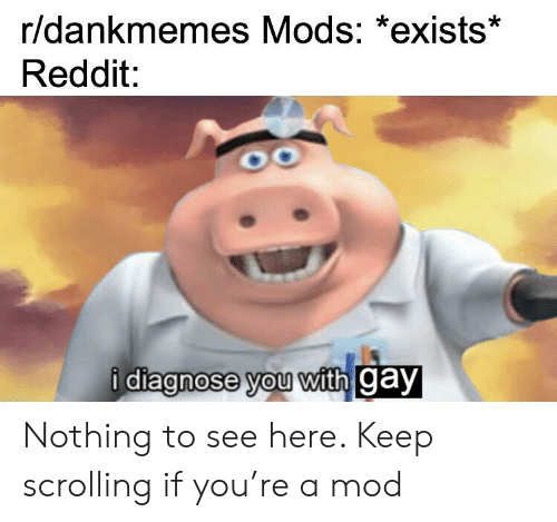 Reddit, Gay, and Mod: r/dankmemes Mods: *exists*  Reddit:  i diagnose you with gay  diagnose vou with Cay Nothing to see here. Keep scrolling if you're a mod