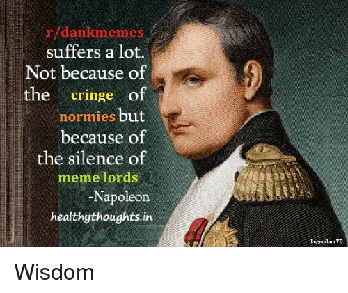 Meme, Dank Memes, and Silence: r/dankmemes  suffers a lot.  Not because of  cringe o1  normies but  because of  the silence of  the  meme lords  Napoleon  healthythoughts.in  endaryVI