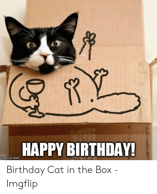 R HAPPY BIRTHDAY! Imgflipcom Birthday Cat in the Box - Imgflip ...