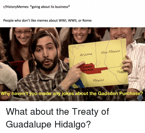 Memes, Arizona, and Business: r/HistoryMemes: *going about its business  People who don't like memes about WWI, WWlI, or Rome:  New Mexico  Arizona  GADSDEN  PURCHASE  Te  Mexico  Why haven't you made any jokes about the Gadsden Purchase?