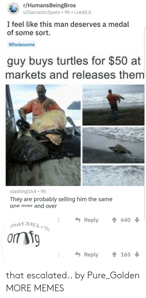 Dank, Memes, and Target: r/HumansBeingBros  u/SarcasticSpam 9h i.redd.it  I feel like this man deserves a medal  of some sort.  Wholesome  guy buys turtles for $50 at  markets and releases them  slashing164 9h  They are probably selling him the same  one over and over  Reply  640  matae3  Reply165 that escalated.. by Pure_Golden MORE MEMES