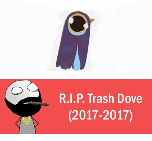 Dove, Memes, and 🤖: R.I.P. Trash Dove  (2017-2017)