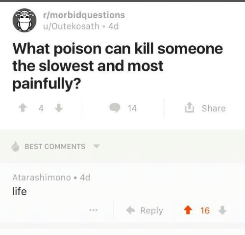 Life, Best, and Best Comments: r/morbidquestions  u/Outekosath。4d  What poison can kill someone  the slowest and most  painfully?  Share  14  4  BEST COMMENTS  Atarashimono 4d  life  ← Reply ↑16↓