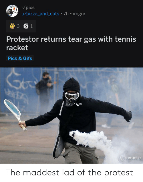 Cats, Pizza, and Protest: r/pics  u/pizza_and_cats 7h imgur  3 S 1  Protestor returns tear gas with tennis  racket  Pics &Gifs  TA  REUTERS The maddest lad of the protest