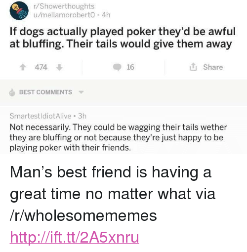 "Best Friend, Dogs, and Friends: r/Showerthoughts  u/mellamoroberto 4h  If dogs actually played poker they'd be awful  at bluffing. Their tails would give them away  474  16  Share  BEST COMMENTS  SmartestldiotAlive 3h  Not necessarily. They could be wagging their tails wether  they are bluffing or not because they're just happy to be  playing poker with their friends. <p>Man's best friend is having a great time no matter what via /r/wholesomememes <a href=""http://ift.tt/2A5xnru"">http://ift.tt/2A5xnru</a></p>"