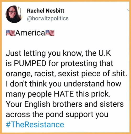 America, Shit, and Orange: Rachel Nesbitt  @horwitzpolitics  America  Just letting you know, the U.K  is PUMPED for protesting that  orange, racist, sexist piece of shit  I don't think you understand how  many people HATE this prick.  Your English brothers and sisters  across the pond support you