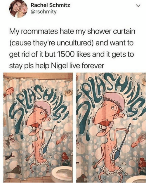 Rachel Schmitz Rschmity My Roommates Hate Shower Curtain Cause Theyre Uncultured And Want To Get Rid Of It But 1500 Likes Gets Stay Pls Help