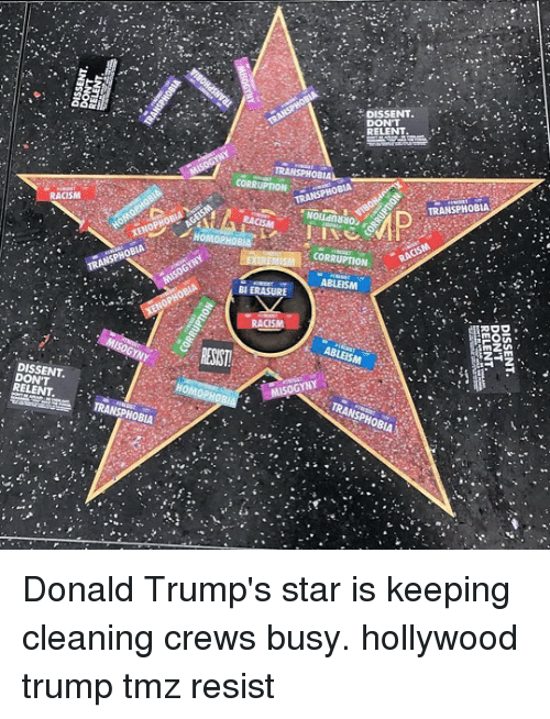 Memes, Racism, and Star: RACISM  DISSENT.  RELENT  TRANSPHOBIA  HO  HOM  BI ERASURE  DISSENT.  DON'T  RELENT  TRANSPHOBIA  RACIS  CORRUPTION  ABLEISM  TRANSPHOBIA Donald Trump's star is keeping cleaning crews busy. hollywood trump tmz resist
