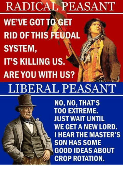 Memes, Masters, and Liberalism: RADICAL PEASANT  WE'VE GOT TOGET  RID OF THIS FEUDAL  SYSTEM  IT'S KILLING US.  ARE YOU WITH US?  LIBERAL PEASANT  NO, NO, THAT'S  TOO EXTREME.  JUST WAIT UNTIL  WE GET A NEW LORD.  I HEAR THE MASTER'S  SON HAS SOME  GOOD IDEAS ABOUT