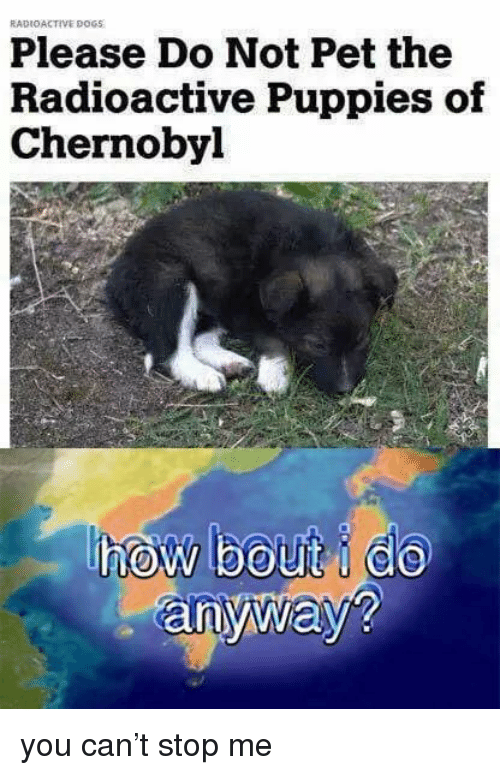 Dogs, Puppies, and How: RADIOACTIVE DOGS  Please Do Not Pet the  Radioactive Puppies of  Chernobyl  how bout do  anyway? you can't stop me