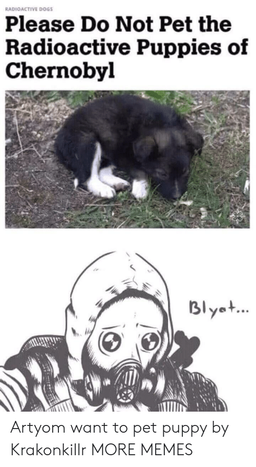 Dank, Dogs, and Memes: RADIOACTIVE DOGS  Please Do Not Pet the  Radioactive Puppies of  Chernobyl  Blyet Artyom want to pet puppy by Krakonkillr MORE MEMES