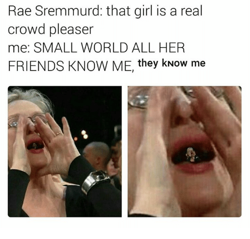 Friends, Rae Sremmurd, and Girl: Rae Sremmurd: that girl is a real  crowd pleaser  me: SMALL WORLD ALL HER  FRIENDS KNOW ME, they kNow me