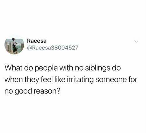 Dank, Good, and For No Good Reason: Raeesa  @Raeesa38004527  What do people with no siblings do  when they feel like irritating someone for  no good reason?