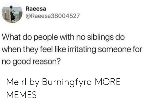 Dank, Memes, and Target: Raeesa  @Raeesa38004527  What do people with no siblings do  when they feel like irritating someone for  no good reason? MeIrl by Burningfyra MORE MEMES