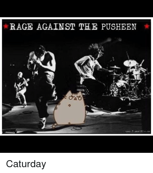 Caturday, Memes, and 🤖: RAGE AGAINST THE PUSHEEN Caturday