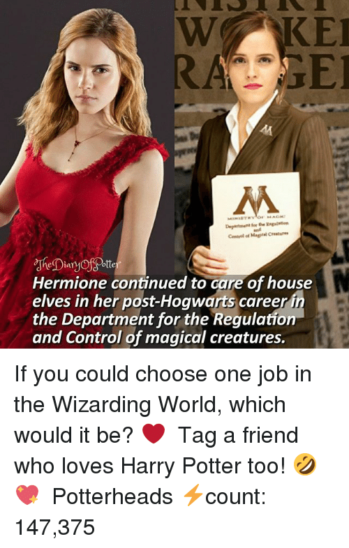 Choose One, Harry Potter, and Hermione: RAGE  Hermione continued to care of house  elves in her post-Hogwarts caree  the Department for the Regulation  and Control of magical creatures. If you could choose one job in the Wizarding World, which would it be? ❤ ♔ Tag a friend who loves Harry Potter too! 🤣💖 ◇ Potterheads⚡count: 147,375