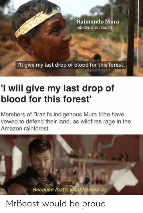 Amazon, Heroes, and Dank Memes: Raimundo Mura  INDIGENOUS LEADER  l'll give my last drop of blood for this forest.  'I will give my last drop of  blood for this forest'  Members of Brazil's indigenous Mura tribe have  vowed to defend their land, as wildfires rage in the  Amazon rainforest.  Because that's what heroes do. MrBeast would be proud