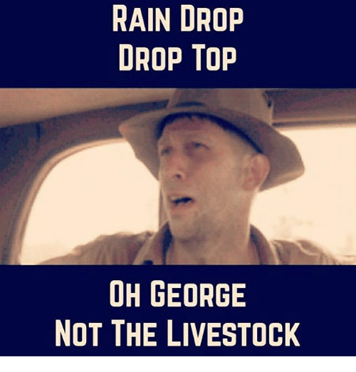 Memes, Rain, and 🤖: RAIN DROP  DROP TOP  OH GEORGE  NOT THE LIVESTOCK