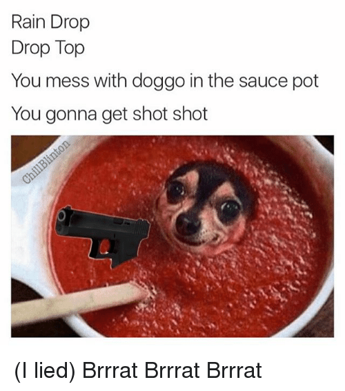 Memes, Rain, and Sauce: Rain Drop  Drop Top  You mess with doggo in the sauce pot  You gonna get shot shot (I lied) Brrrat Brrrat Brrrat