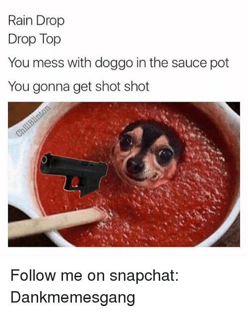 Memes, Snapchat, and Rain: Rain Drop  Drop Top  You mess with doggo in the sauce pot  You gonna get shot shot Follow me on snapchat: Dankmemesgang