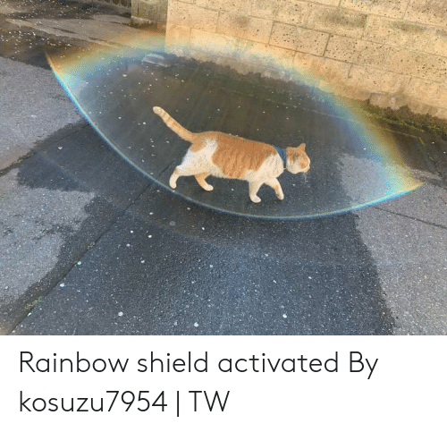 Dank, Rainbow, and 🤖: Rainbow shield activated  By kosuzu7954 | TW
