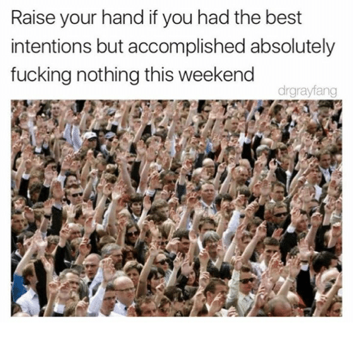 Dank, Best, and 🤖: Raise your hand if you had the best  intentions but accomplished absolutely  fucking nothing this weekend  drgrayfang