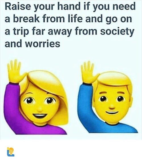 Life, Memes, and Break: Raise your hand if you need  a break from life and go on  a trip far away from society  and worries 🙋♂️
